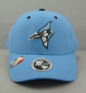 Johns Hopkins Blue Jays Team Color One Fit Hat