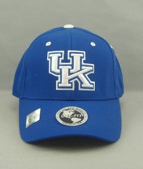 Kentucky Wildcats Team Color One Fit Hat
