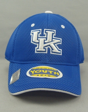 Kentucky Wildcats Youth Elite One Fit Hat
