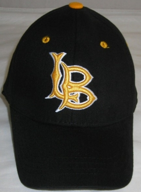 Long Beach State Youth Team Color One Fit Hat