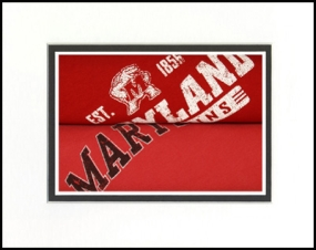 Maryland Terrapins Vintage T-Shirt Sports Art