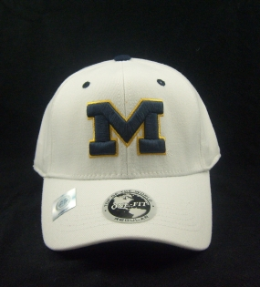Michigan Wolverines White One Fit Hat