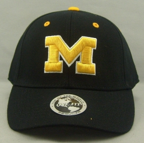 Michigan Wolverines Black One Fit Hat