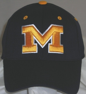 Michigan Wolverines Team Color One Fit Hat