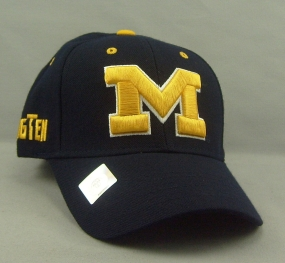 Michigan Wolverines Adjustable Hat