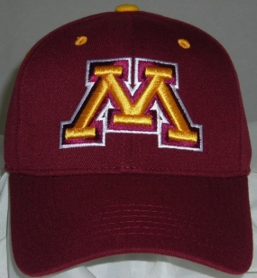 Minnesota Golden Gophers Team Color One Fit Hat