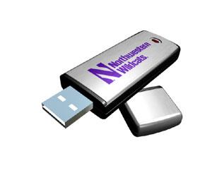 Rhinotronix Northwestern Wildcats College Memory Stick