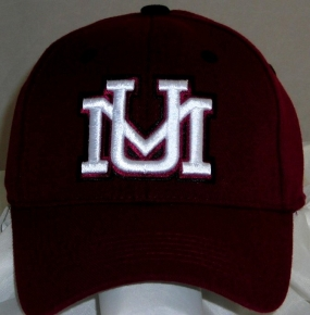 Montana Grizzlies Team Color One Fit Hat