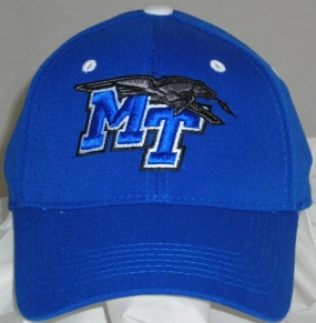 Middle Tennessee State Blue Raiders Team Color One Fit Hat