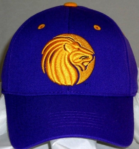 North Alabama Lions Team Color One Fit Hat