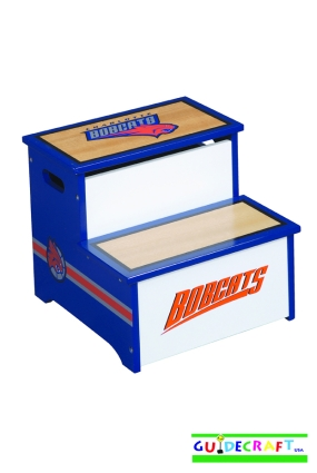 Charlotte Bobcats Storage Step Up