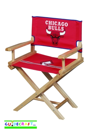 Chicago Bulls Youth Director's Chair