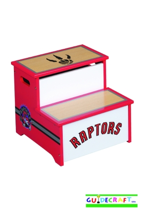 Toronto Raptors Storage Step Up