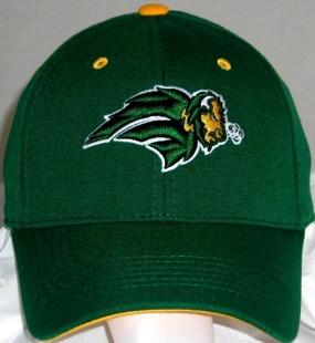 North Dakota State Bison Team Color One Fit Hat