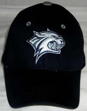 UNH Wildcats Youth Team Color One Fit Hat