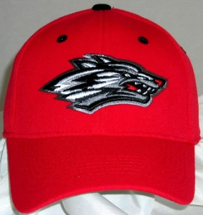 New Mexico Lobos Team Color One Fit Hat