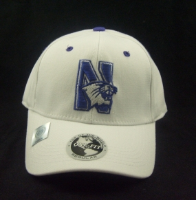 Northwestern Wildcats White One Fit Hat