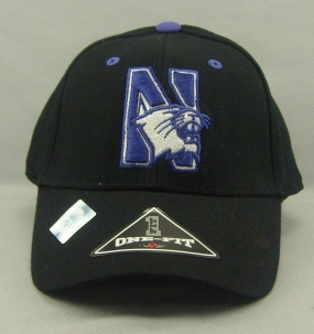 Northwestern Wildcats Black One Fit Hat