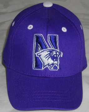 Northwestern Wildcats Infant One Fit Hat