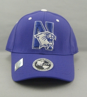 Northwestern Wildcats Team Color One Fit Hat