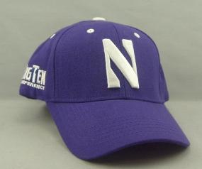 Northwestern Wildcats Adjustable Hat