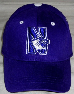 Northwestern Wildcats Youth Team Color One Fit Hat