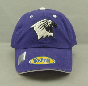 Northwestern Wildcats Youth Crew Adjustable Hat