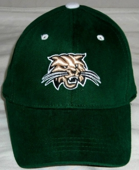 Ohio Bobcats Youth Team Color One Fit Hat