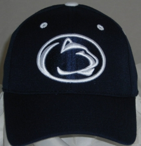 Penn State Nittany Lions Team Color One Fit Hat