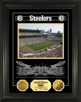 Heinz Field Archival Etched Glass 24kt Gold Coin Photo Mint