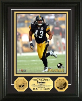 Troy Polamalu 24KT Gold Coin Photo Mint