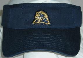 Pittsburgh Panthers Visor