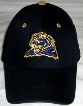 Pittsburgh Panthers Youth Team Color One Fit Hat