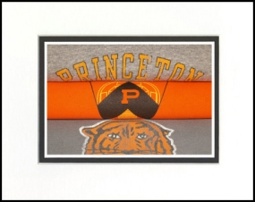 Princeton Tigers Vintage T-Shirt Sports Art