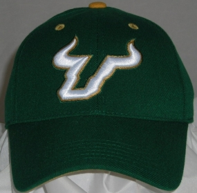 South Florida Bulls Team Color One Fit Hat