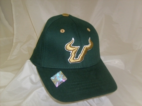 South Florida Bulls Youth Team Color One Fit Hat
