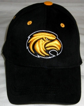 Southern Miss Golden Eagles Youth Team Color One Fit Hat
