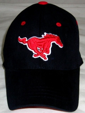 SMU Mustangs Youth Team Color One Fit Hat