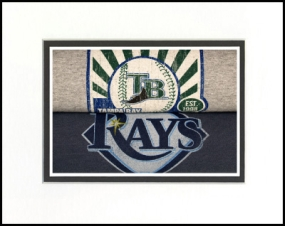 Tampa Bay Rays Vintage T-Shirt Sports Art