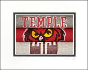 Temple Owls Vintage T-Shirt Sports Art