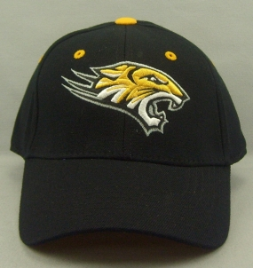 Towson Tigers Black One Fit Hat