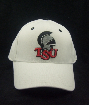 Troy Trojans White One Fit Hat