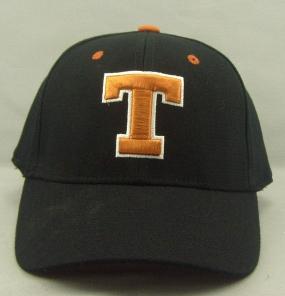 Texas Longhorns Black One Fit Hat