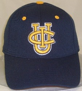 UCI Anteaters Team Color One Fit Hat