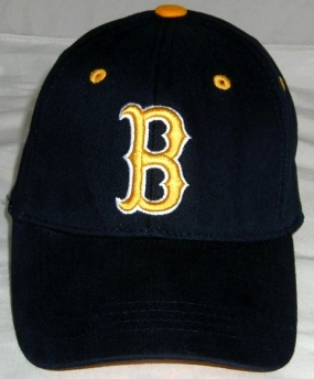UCLA Bruins Youth Team Color One Fit Hat