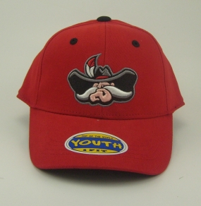 UNLV Runnin Rebels Youth Team Color One Fit Hat