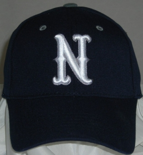 Nevada Wolfpack Team Color One Fit Hat