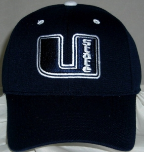 Utah State Aggies Team Color One Fit Hat