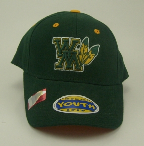 William and Mary Tribe Youth Team Color One Fit Hat