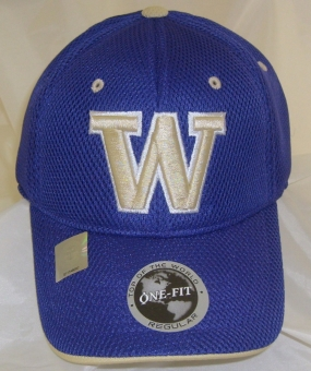 Washington Huskies Elite One Fit Hat